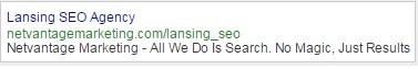 Lansing SEO Ad Standard
